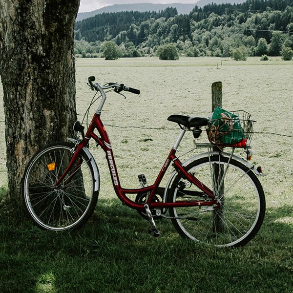 Balade en vélo 2